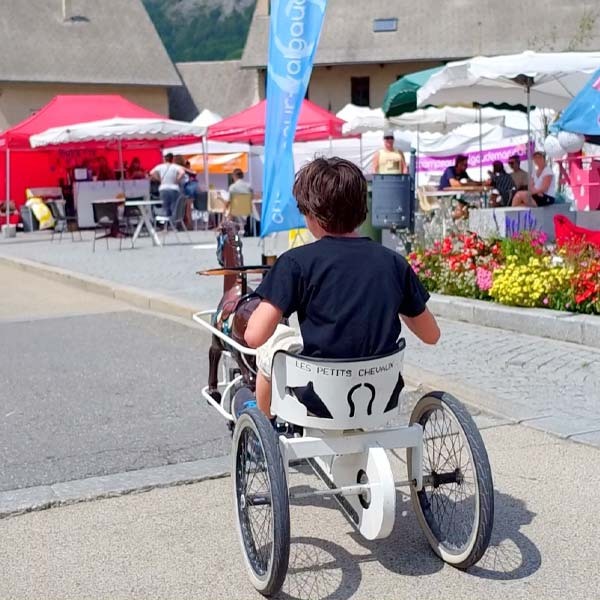un petit garçon sur un vélo en forme d'attelage avec un cheval de bois à l'avant