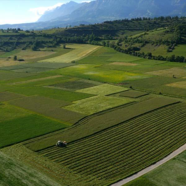 de vastes champs cultivés pour l'agriculture dans les Hautes-Alpes