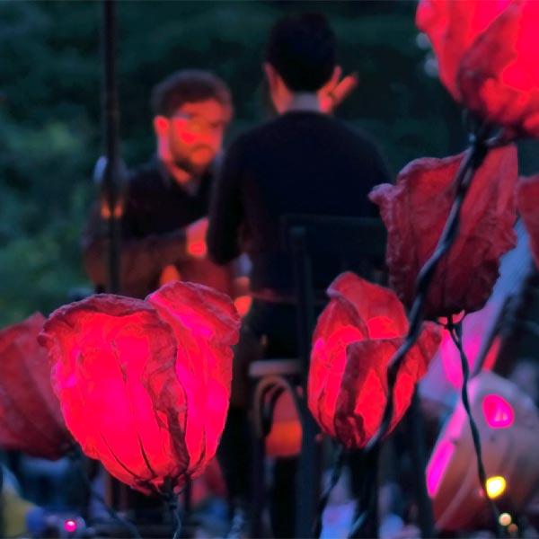 spectacle Tous dehors(enfin), concert de nuit dans un champ de coquelicots lumineux